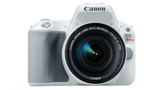 Explore The World of Photography with Canon Rebel SL2 Camera