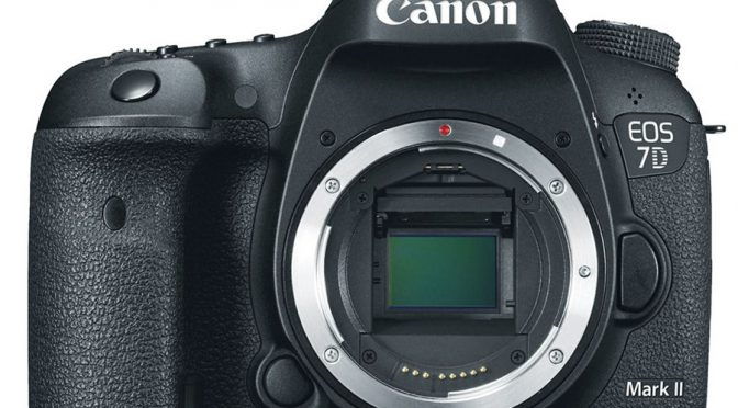 Canon 7D Mark II Review – Unleash the Photographer in You